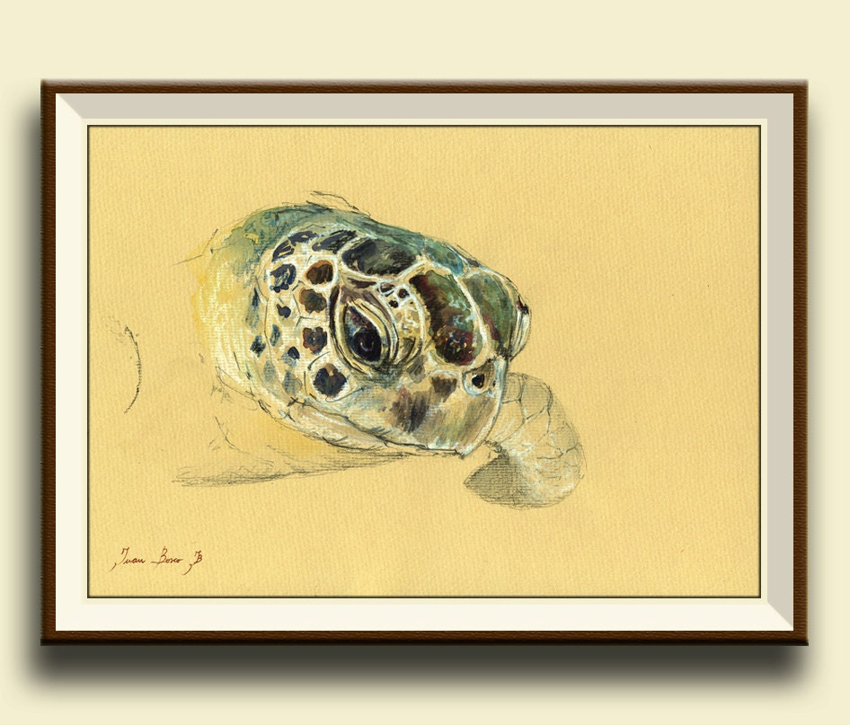 Nice Sea Turtle Wall Decor Picture Collection - Wall Art Collections ...