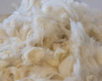 Raw wool from Romanov-merino, washed