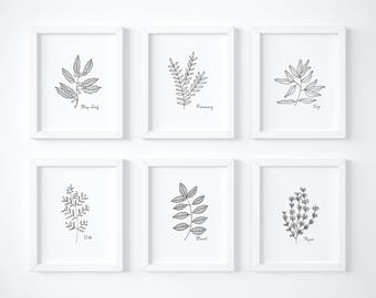 Kitchen Herb Prints, Hand Drawn Herbs, Set of Six, Basil, Sage, Thyme, Dill, Rosemary, Bay Leaf, Herb Prints, Kitchen Art