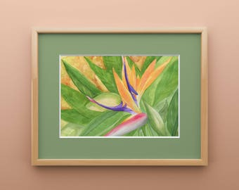 Bird of Paradise Watercolor Print