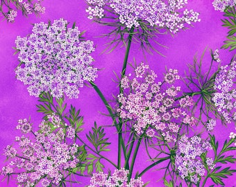 Henry Glass - Botanical Blooms - Queen Annes Lace - Purple - Fabric by the Yard 8938-55