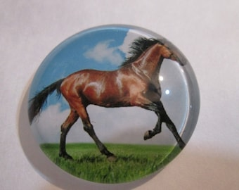 A 30 mm horse pattern round glass cabochon