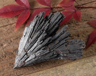 One BLACK KYANITE Fan - M or L - Raw Kyanite Crystal, Healing Crystal, Healing Stone, Kyanite Blade, Grounding Stone, Kyanite Stone E0836