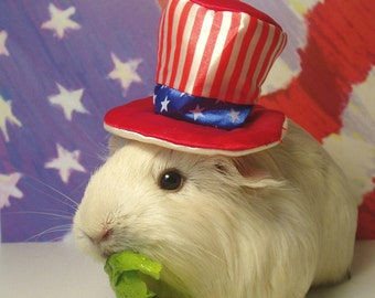Patriotic GUINEA PIG Magnets - 5 Pc July 4th Photo Magnet Set - Uncle Sam - USA Flag - Lettuce Munching Pigs and More