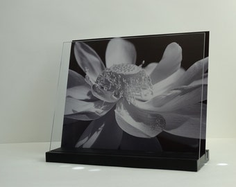 Cookbook and I-Pad Stand, Cookbook Stand, Cookbook Holder: Lotus Bloom Black and White