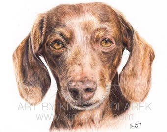 Custom Dog Pet Portrait Colored Pencil Drawing (Small) — 2018 Commission Slot