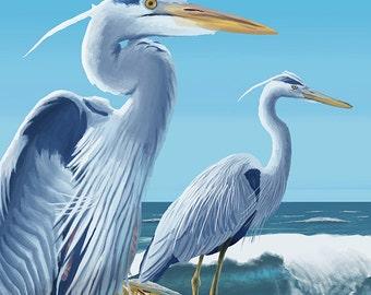 Bodega Bay, California - Blue Heron (Art Prints available in multiple sizes)