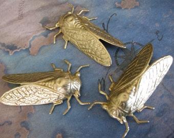 1 PC extra large Cicada stamping -  Raw brass - UU03