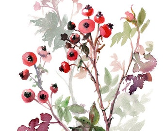 Floral Art Gift, Rose hip watercolor, original botanical painting, floral painting