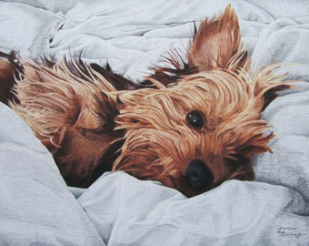 Print of Yorkshire Terrier Drawing
