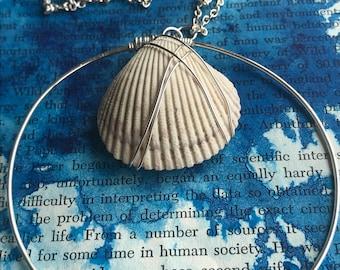 Seashell Hoop Necklace