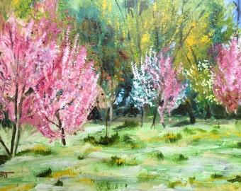 Taos in Spring - Fine Art - Original Oil Painting