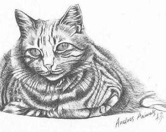 Card - Fat cat