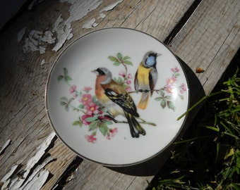 Bird plate for decoration
