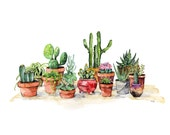 Potted Succulents Paintin...