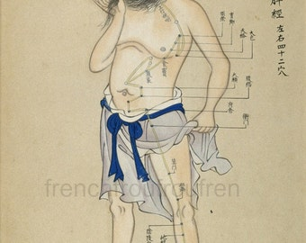 antique chinese medecine acupuncture chart illustration DIGITAL DOWNLOAD