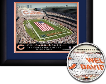 NFL-Chicag Bears  15x18 MATTED and FRAMED Personalized Stadium Print