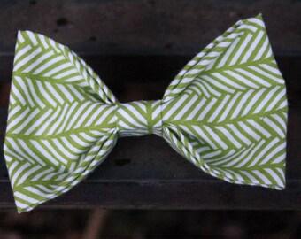 Forest Fern | Pet Bow Tie