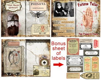 Fortune Teller Witch Halloween Journal Pages Printable Digital Download Junk Journal Project Life Smash Book Palmistry Apothecary Labels
