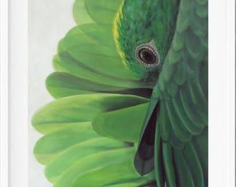parrot Art Print, amazon parrot, green, bird painting, parrot painting, parrot art, bird lover gift, bird art, parrot, bird gift