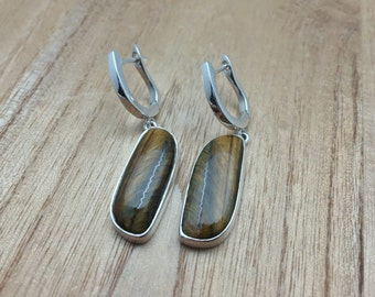 Tigers Eye Earrings // 925 Sterling Silver // Closed Backing // Irregular Shape