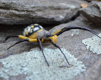 Arachnid sculpture, Yellow and Black Garden Spider, life size needle felted fiber art