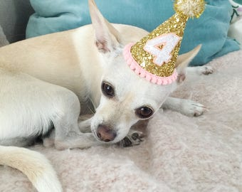 Dog Costumes || Birthday Hat || Dog Party Hat || Dog Birthday Party Outfit || Animal Birthday Hat || Pet Birthday Hat || Dog Clothes