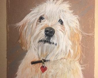 Pet Portrait Prints