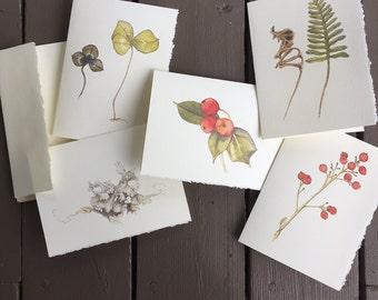5 Botanical Notecards