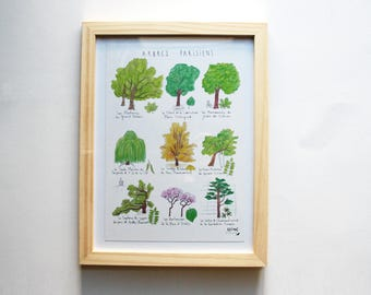 """Great card A5 - poster """"Trees Paris"""" - watercolor and ink - Paris nature illustration - decorative poster"""