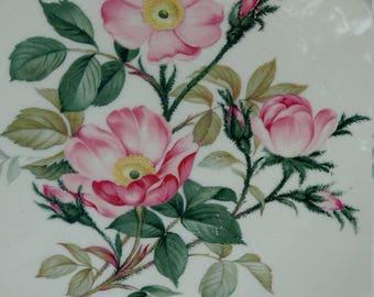 Large Rose Plate-Dinner plate or Serving Cake Plate-Gilt rim