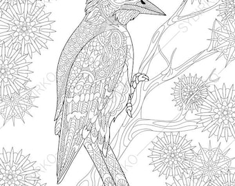Woodpecker. Coloring Pages. Animal coloring book pages for Adults. Instant Download Print