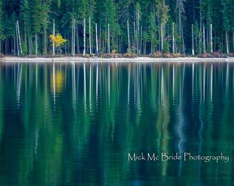 Autumn Lake Solitude.