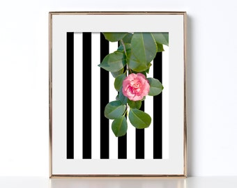 Floral Print Digital Download Flower Photography Colorful Wall Decor Office Print Black and White Stripes Cubicle Decor Bright Colors Poster