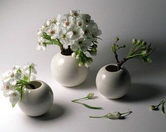 White Porcelain Mini Vases - Extended Set