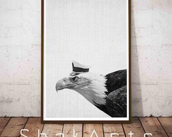 Bird Flying Wall Art, Modern Minimal, Minimal Bird, Bird Flying Wall Art, Wilderness Wall Art, Digital art, Rustic Home Decor, Captain Print