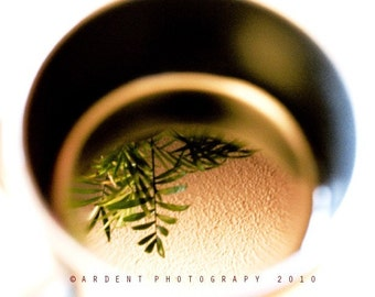 Reflection Art Abstract Photograph Wall Art Room decor - Cup of Tea with Palm a Fine Art Photograph