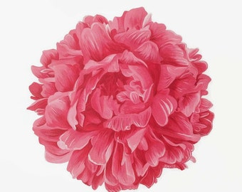 Flower Print, Floral Print, Peony Print, Flower Painting, Peony Painting, Red Flower, Pink Flower, Flower Art, Peony Art, Red Peony