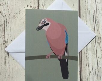 Jay greeting card - blank inside