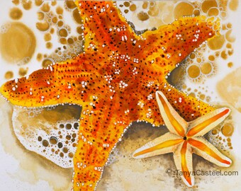 Starfish Watercolor Art Print 8x10