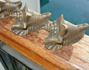8 small SHELL FISH solid BRASS knobs tropical vintage old style 75 mm B