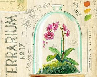 Terrarium Print, Orchid Illustration, Terrarium Illustration, Orchid Decor, Botanical Art, Botanical Illustration, Orchid Print