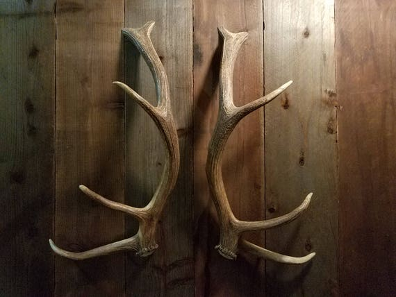 Nice Shed Elk Antler Handle Set Matched For Door Pulls Refrigerator Tree  House Man Cave Gun Room Hunting Lodge Cabin Log Home Barn Doors From  AntlerArtisans ...