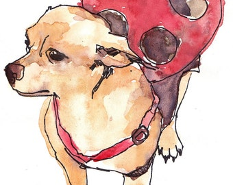 Chihuahua in a Ladybug Costume Print