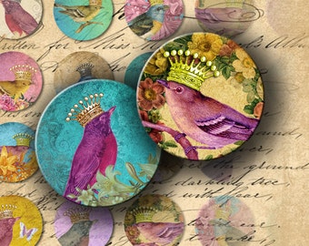 Birds Inch Circles INSTANT DOWNLOAD Digital Collage Sheet Cute Birds with Cute Crowns 1 inch - DigitalPerfection digital collage sheet 862