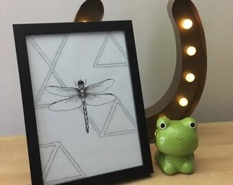 Creepy Crawly Dragonfly