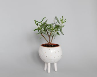 Ceramic white and gold planter with 3 legs/air planter/ succulent planter/ flower pot/ tripod planter/ white planter cover/mother's day gift