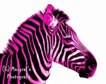 Hot pink Zebra Photography print, 5x7 zebra print, hot pink zebra print