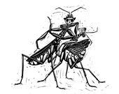 Praying mantis couple tan...