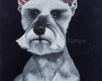 Schweet Schnauzer/ Original Dog Portrait Acrylic Painting